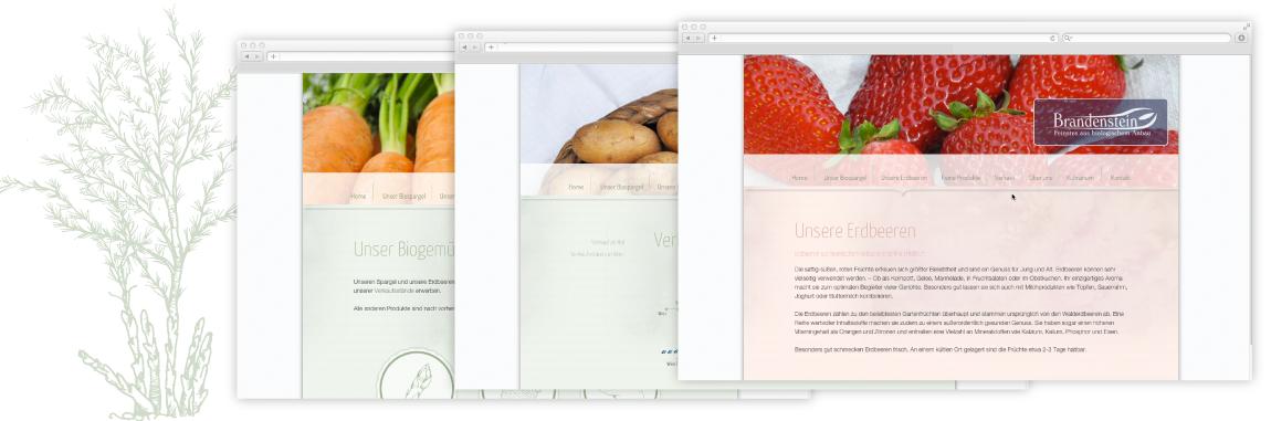 Webdesign für Biospargel Brandenstein - Unterseiten